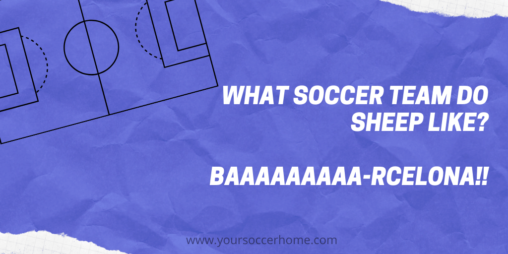 sheep soccer joke